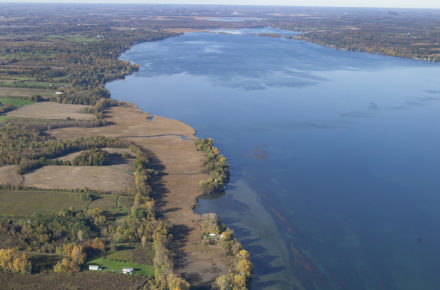 Aerial Canoga Marsh Looking North