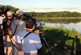 Four people birdwatching at Montezuma National Wildlife Refuge