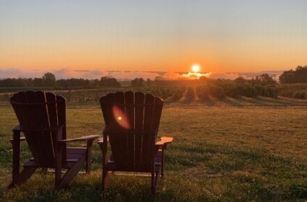 View of a a bright orange sunrise looking out over two Adirondack chairs, lawn and the vineyard at Bet the Farm Winery